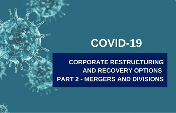 Photo for article Corporate Restructuring and Recovery Options Available: Part 2 -  Mergers and Divisions