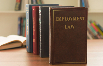 Photo for article Regardless of Brexit: There are already key differences between UK and Irish employment law