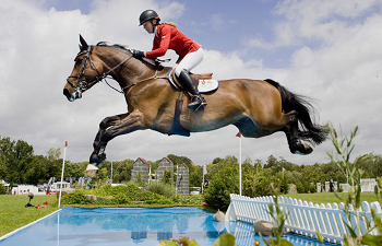 Photo for article Decision of Belgian Competition Authority Set to Liberalise International Show Jumping