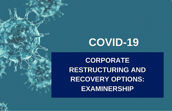 Photo for article Corporate Restructuring and Recovery Options Part 3: Examinership