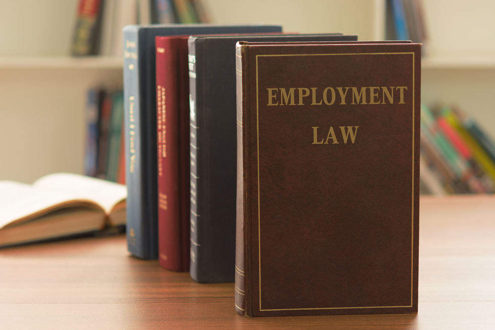 Photo to illustrate article https://www.lkshields.ie/images/uploads/news/Employment_Law_Book.jpg.